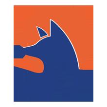 swiftfox-crm-logo